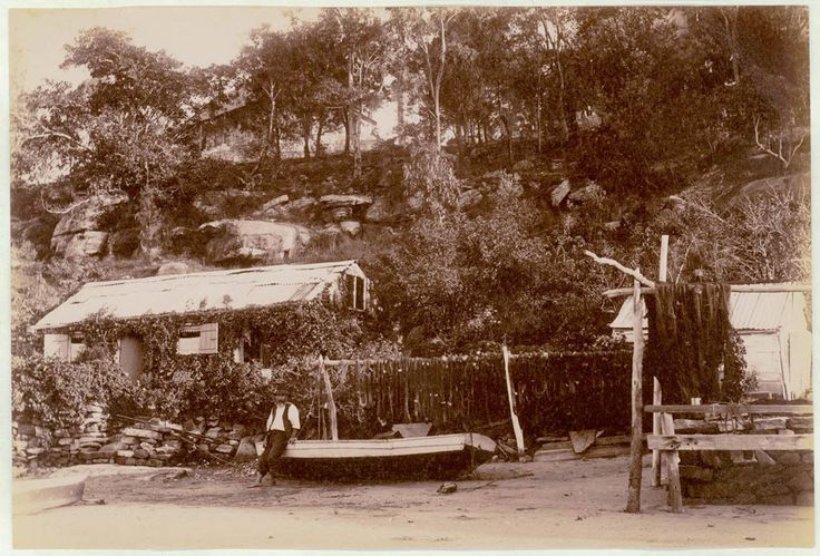Fisherman's hut, Como, Georges River ... ca. 1900-1910 ... Starr Photo Co ... State Library of NSW