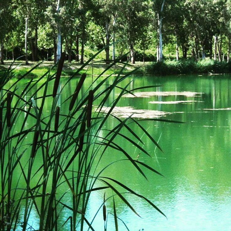 Oz Lake