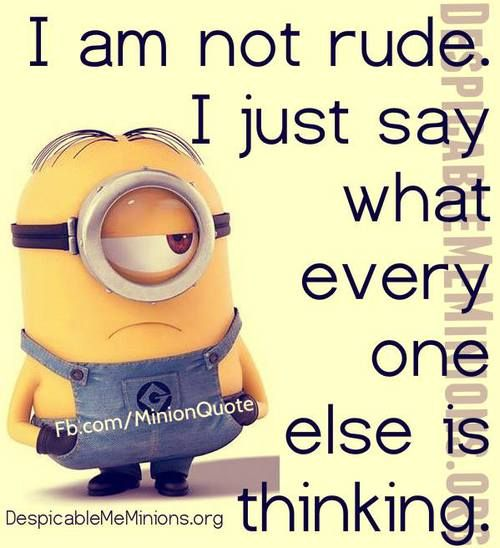 I am not rude. I just say what everyone else is thinking