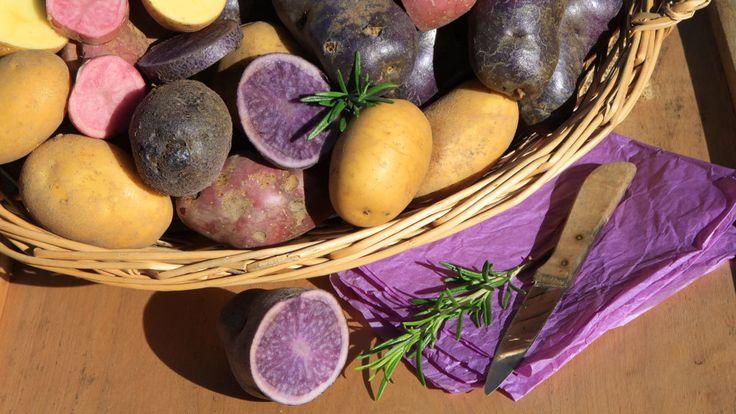 Alte Gemüsesorten: Vergessene Raritäten für den Garten