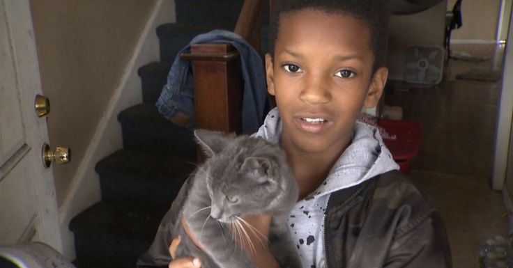 10-year-old Aashir Alauddins absolutely adored his new two-month-old kitten named Alley.