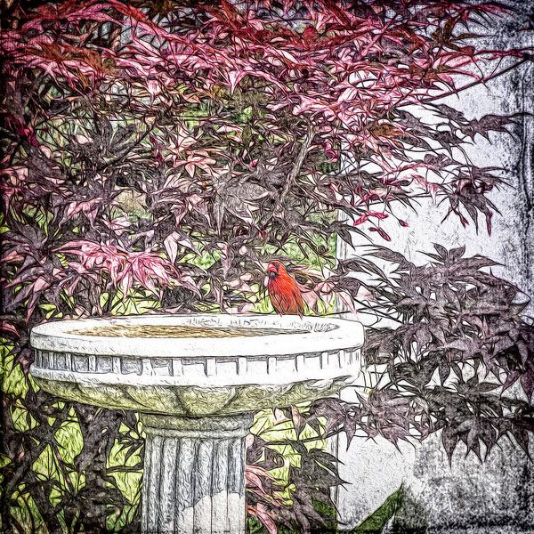 A Refreshing Interlude Art Print by Leslie Montgomery.  All prints are professionally printed, packaged, and shipped within 3 - 4 business days. Choose from multiple sizes and hundreds of frame and mat options.