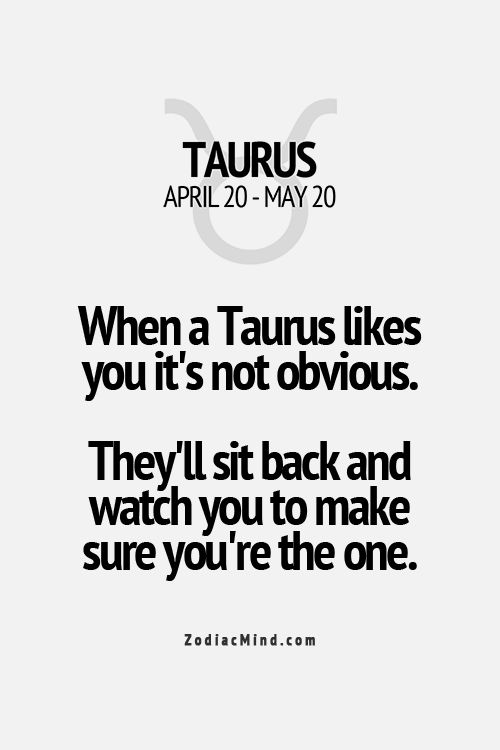 When a Taurus likes you it's not obvious. They'll sit back and watch you to make sure you're the one.