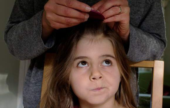 Three Products to Prevent Head Lice in Your Family