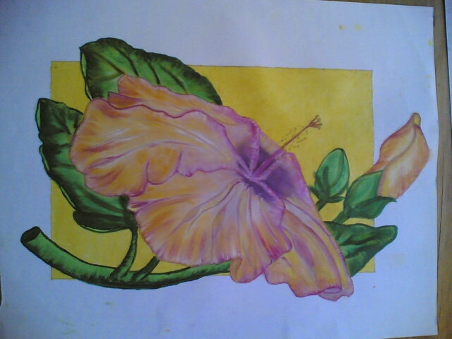 Pretty hibiscus. I paint it for my Mother !