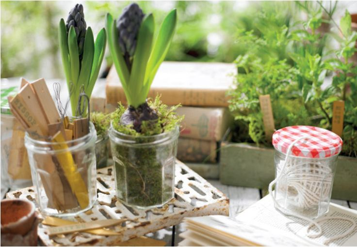 Gardening with Bonne Maman Jars