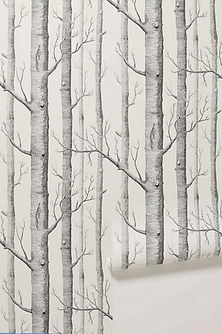 Woods Wallpaper from Anthropologie. $198 for a 33' x 20,5' roll.  Yikes.  Is there something similar that doesn't cost an arm and a leg?