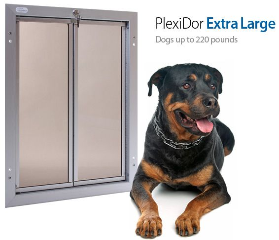 Plexidor Extra Large Dog Door for the door from the house to the screened in porch