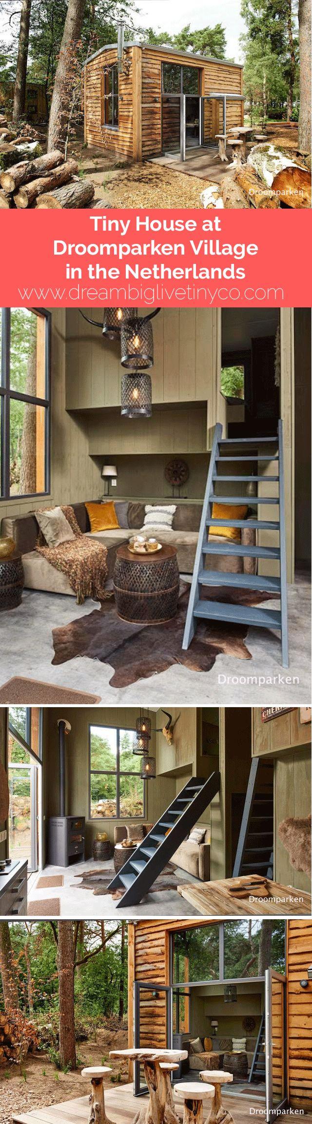 Mini maison naturelle bois forêt