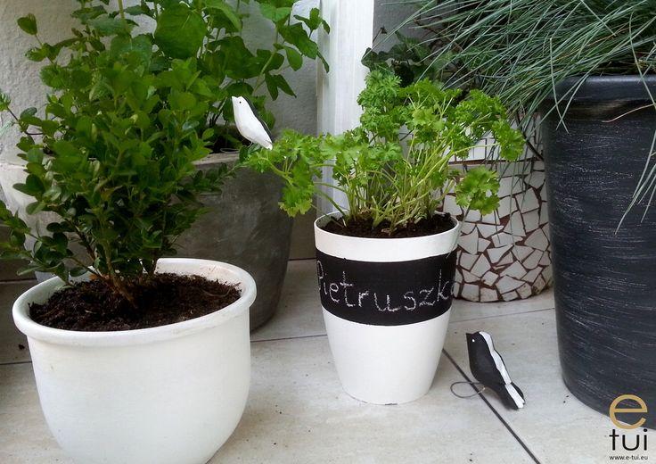 doniczka na zioła http://www.e-tui.eu/doniczka-na-ziola/