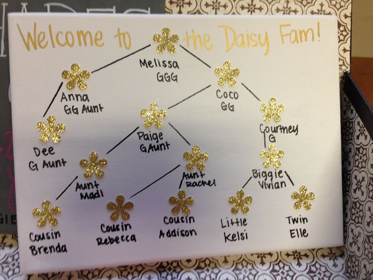 New sorority family tree!