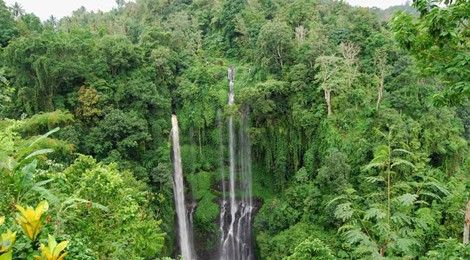 Sekumpul Waterfall  www.travelling-bali.com