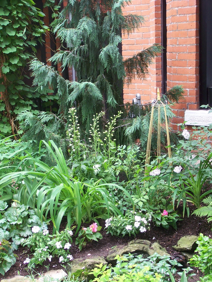 Small garden award winner.  Looking at local award winning gardens gives you a lens into how you should compose your garden with size shape color and ornament