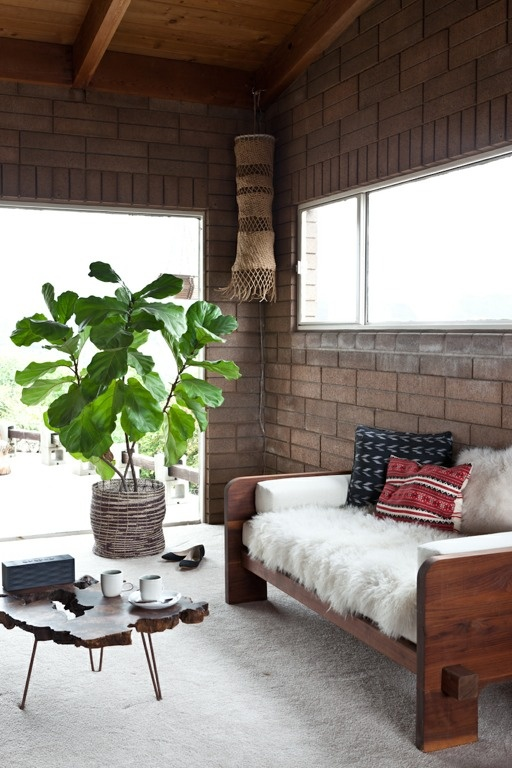 Coffe Tables, Coffee Tables, Couch, Indoor Outdoor, Living Room, Fiddle Leaf, Leaf Figs, Outdoor Spaces, Bricks House