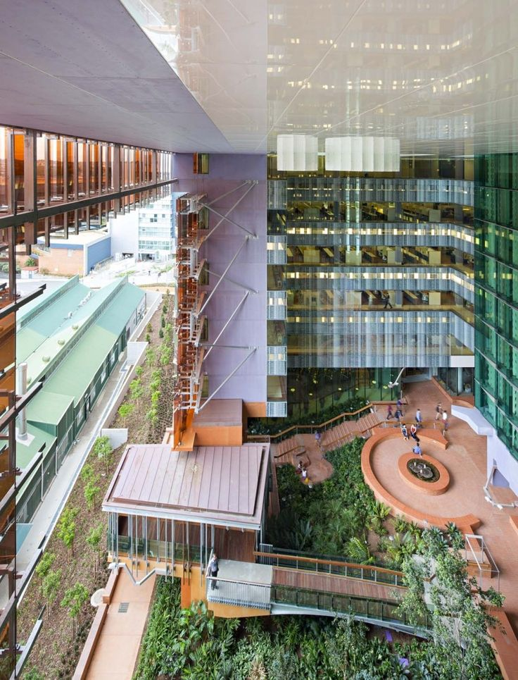 Gallery of How Brisbane's Translational Research Institute Revolutionizes…