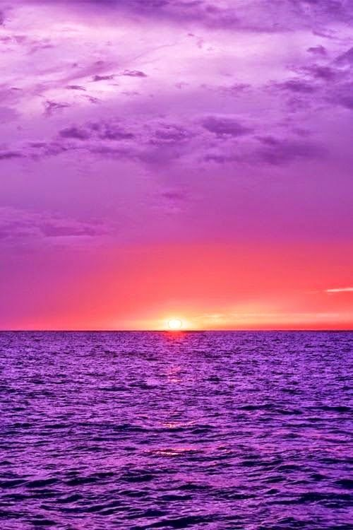 Purple Ocean, the perfect place and #space to relax www.neutral-space.co.uk