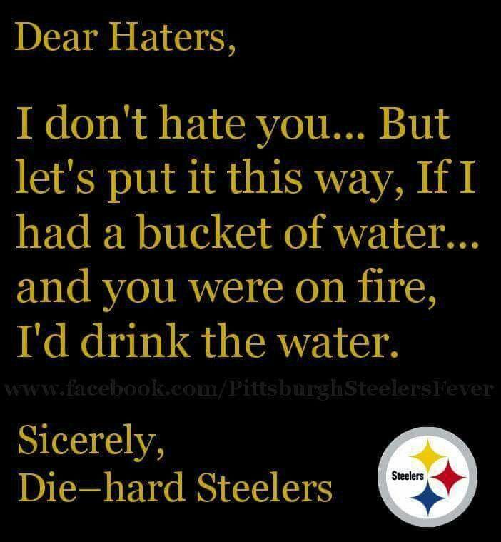 steeler fan saying
