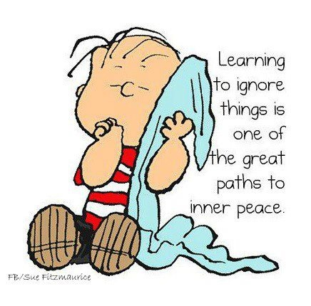 Learning to ignore things is one of the great paths to inner peace.   Peanuts