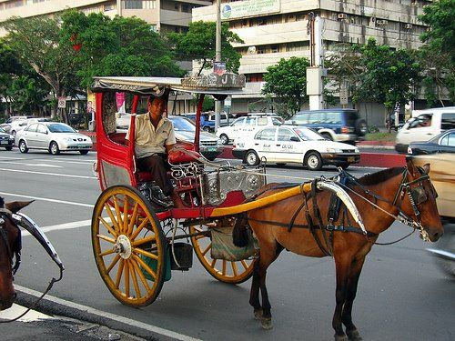 "Kalesa is a horse-driven carriage used in the Philippines. The word predates the Spanish conquest and descends ultimately from an Old Church Slavonic word meaning ""wheels."" This was one of the modes of transportation introduced in the Philippines in the 18Th century. They are rarely used in the streets nowadays except in tourist spots and some rural areas. A kalesa looks like an inclined cart popularized during Spanish occupation as a method of transportation."