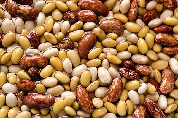 Quali sono i cibi che abbassano il colesterolo?