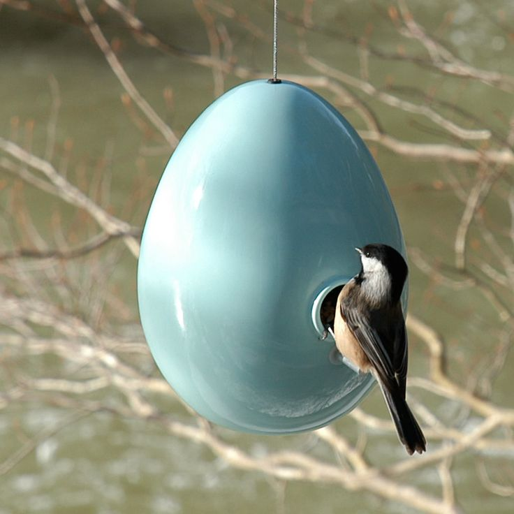 "Give birds a place to hatch their young with the colorful and durable handcrafted stoneware Egg Bird House. The 1 1/8"" diameter entry hole will attract chickadees, wrens, and smaller birds, keeping house sparrows out. Available in seven glossy colors."