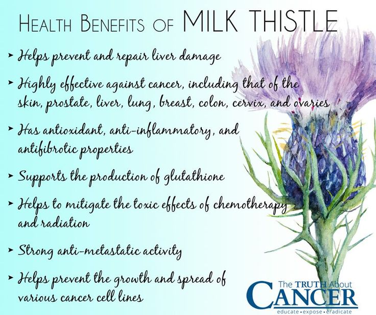 Your liver works hard getting toxins out of your body. Click on the image to discover how milk thistle can help cleanse and refresh your liver so it can do its job and how it can be used in cancer treatment.