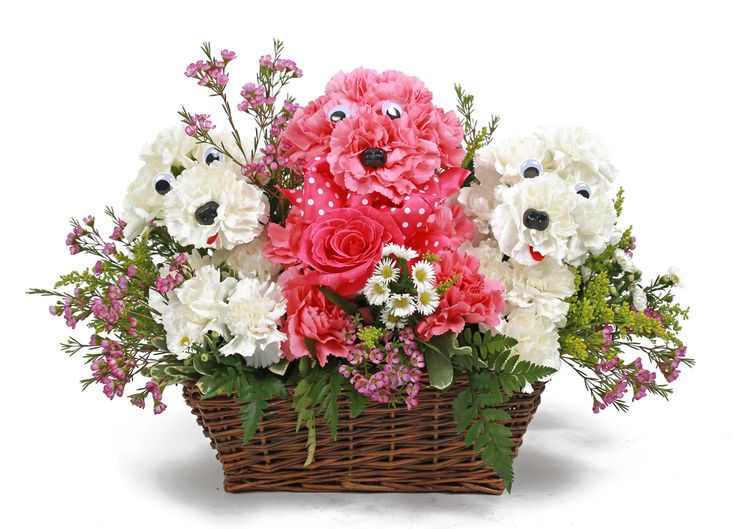 Best summer flowers gifts images on pinterest