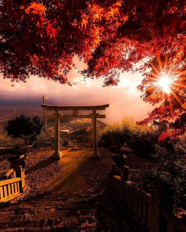 tokyocameraclub on Instagram pinned by myThings 「@photravelers」Instagramアカウントへの @k1_pentaxian_k さんの投稿作品。いいね&コメント大歓迎です。  東京カメラ部分室 Photravelersでは、 #photo_travelers を付けたインスタグラム投稿とPhotravelers Facebookページに投稿いただいた旅行写真を紹介します。  Follow: @photravelers  #photo_travelers #photravelers #travel #traveler #旅 #旅行 #写真