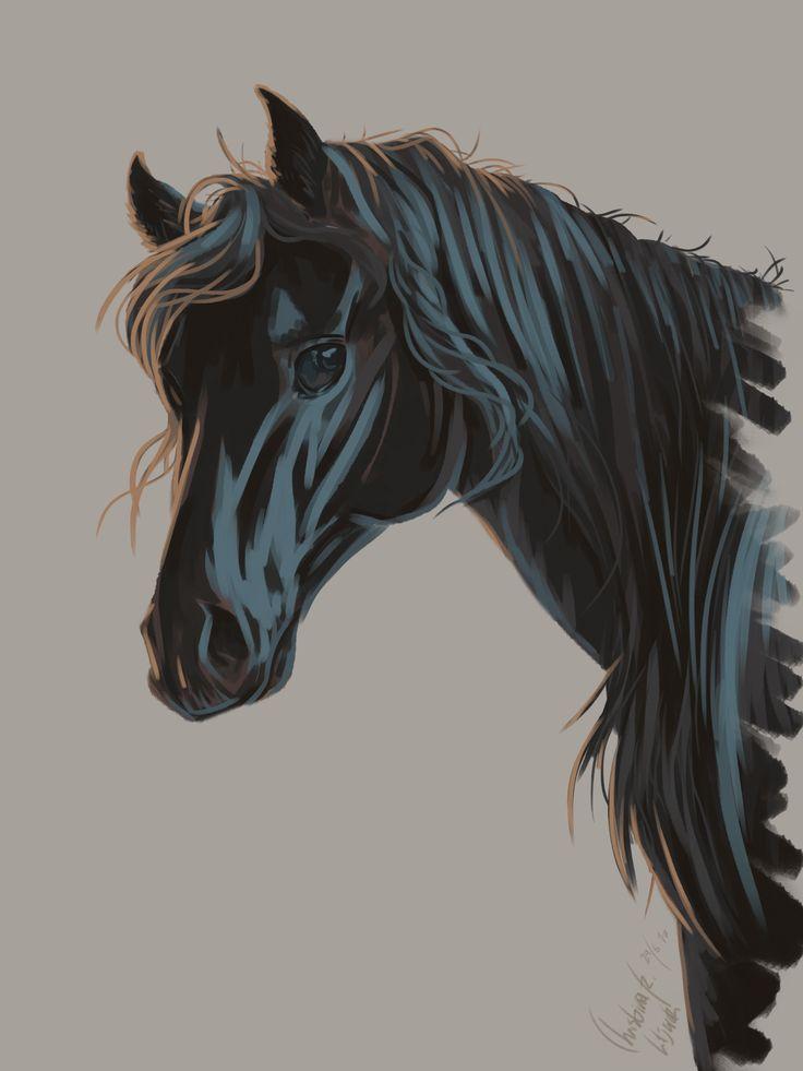 Black horse; drawings by ArtWolf