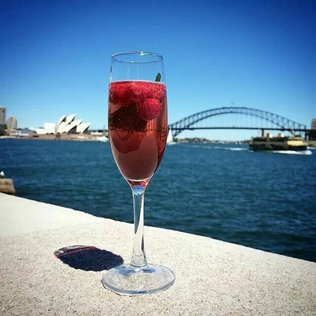 Champagne by Harbour Bridge