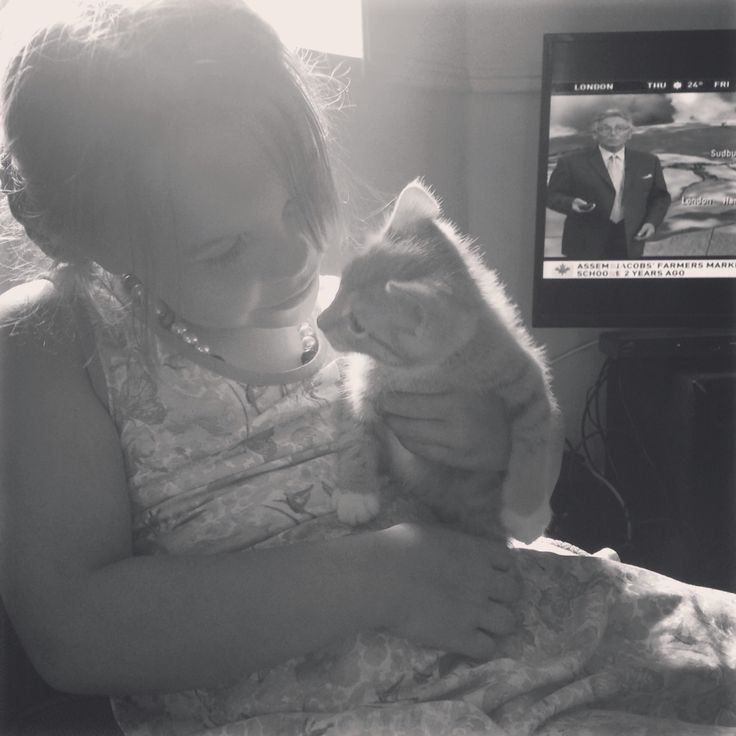 Isabelle and Simba meet for the Frist time Xoxox