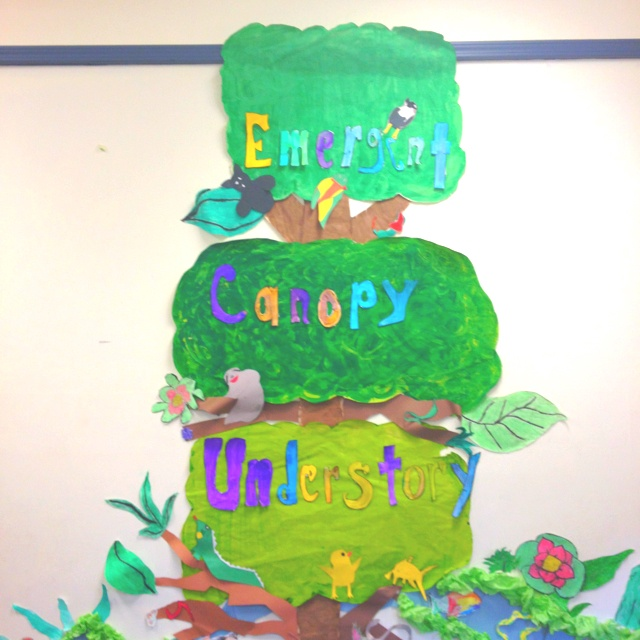 Tropical Rainforest art work display by K-6 graders summer camp program . The kids had fun finding animals that lives in the different levels of trees. Great project for team working.