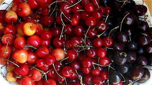 cherries | All About Cherries