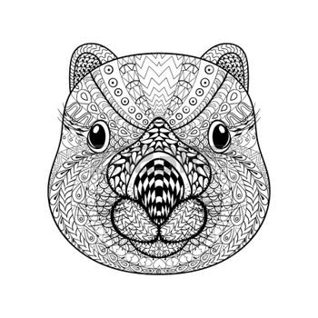 zentangle: Hand drawn tribal Wombat face, animal totem for adult Coloring Page with high details isolated on white background, illustration in zentangle style. Vector monochrome sketch.