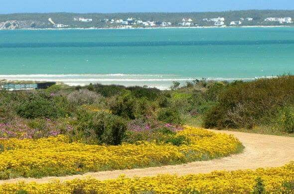 Places of interest to visit in South Africa. The West Coast National Park is home to one of the finest coastal wetlands in the country, and is renowned for its magnificent spring flower displays....#wildlife #southafrica #photosafari #tourism #extremefrontiers #bush #adventure #holiday #vacation #safari #tourist #travel