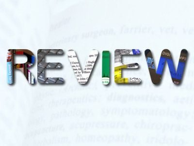 Best article writer service