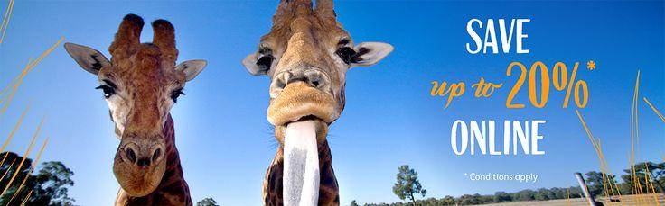 Taronga Western Plains Zoo | Taronga