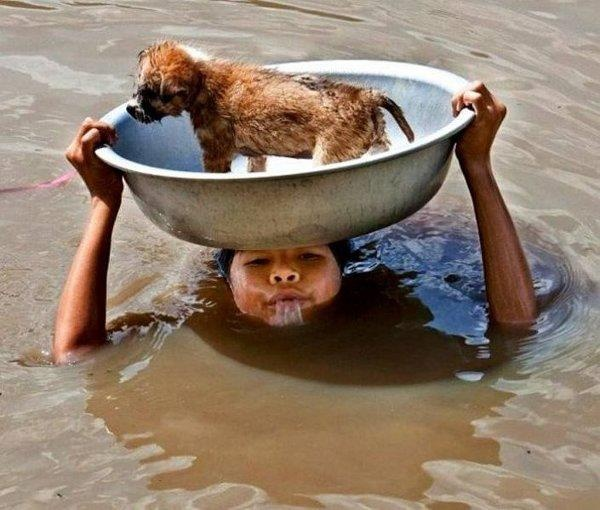 "BBC Boracay says: "" Another amazing pic from daily life in the Philippines. A young girl gives a helping hand to save her pet during a strong flood. """