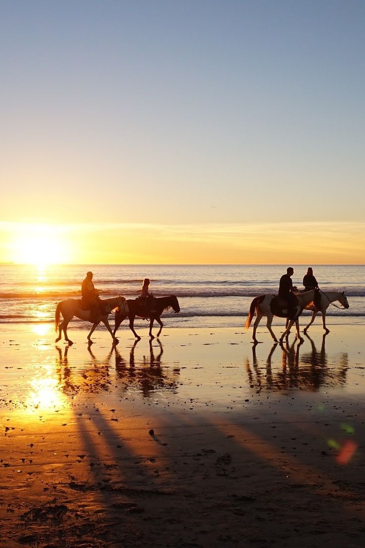 These pristine beach spots along the coast offer mesmerizing views, remote camping, reef snorkeling, horse riding and even cliff walking above the Tasman.