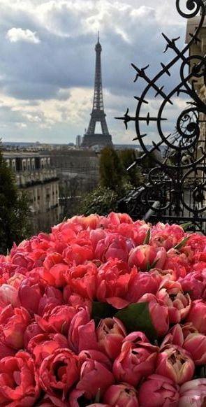 Haute in Paris via @jena1125. #paris #chic