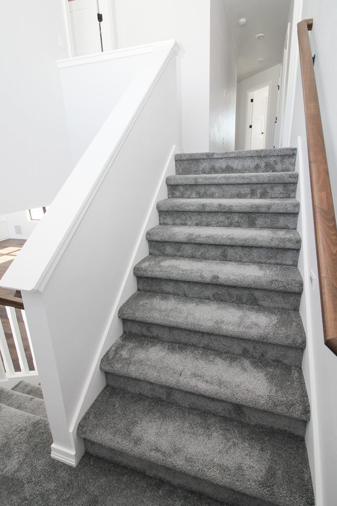 Plush Gray Carpeted Staircase Carpet Staircase Carpet Stairs Grey Carpet Living Room