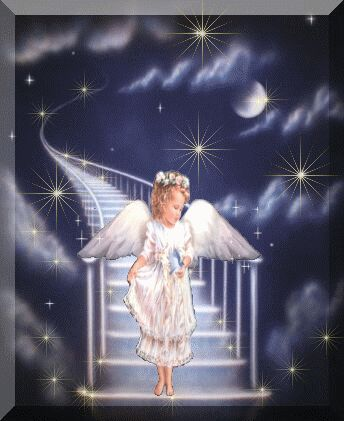 Angel Come From Heaven