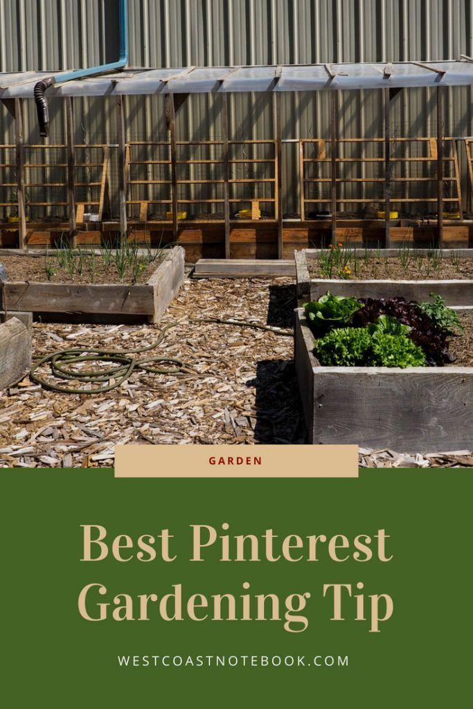 Best Pinterest Gardening Tip Vegetable Garden Planner Gardening