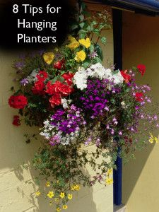8 Tips for Hanging Planters and gardens-
