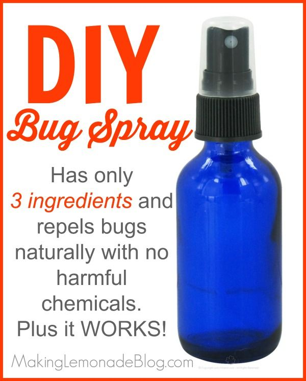 Homemade DIY bug spray using essential oils (and which oils to use to repel various bugs such as mosquitoes, flies, ticks, lice and more!) via makinglemonadeblog.com #ecofriendly #chemicalfree