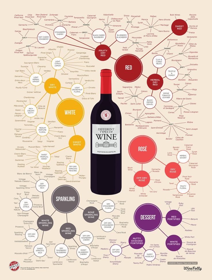 A comprehensive visual guide to all of the major types of wine. This poster will help you find and drink wines you'll love based on their style and flavor characteristics.