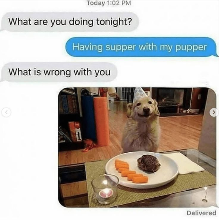 Here are some fantastic Doggo memes that will help you get through the rest of the day