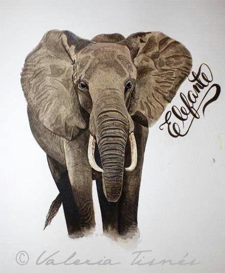 Dia 5, Elefante