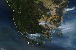 Australia on Fire : Image of the Day : NASA Earth Observatory
