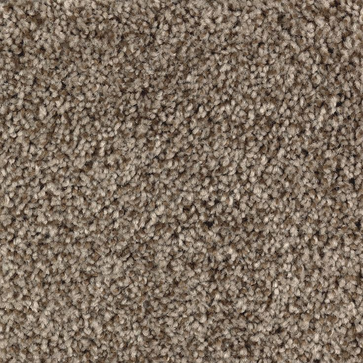 Shop Mohawk Essentials Stainmaster Cedar Chest Textured Indoor Carpet at  Lowes.com